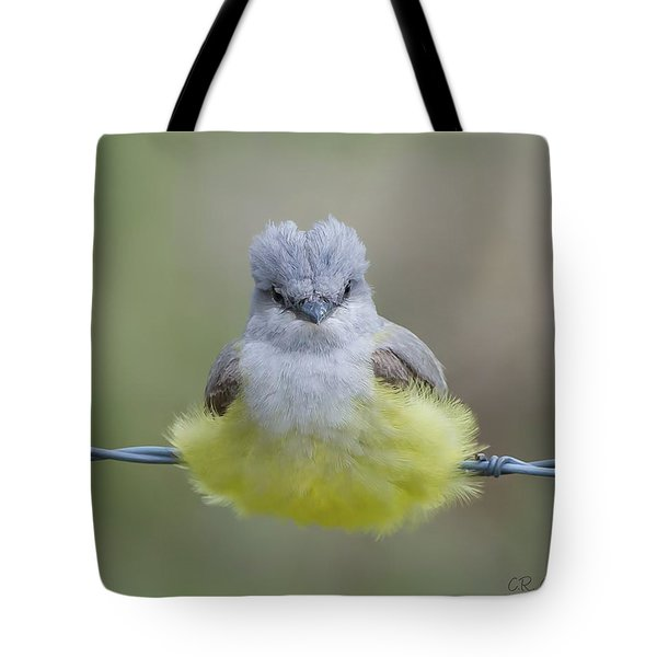 Ball Of Fluff Tote Bag