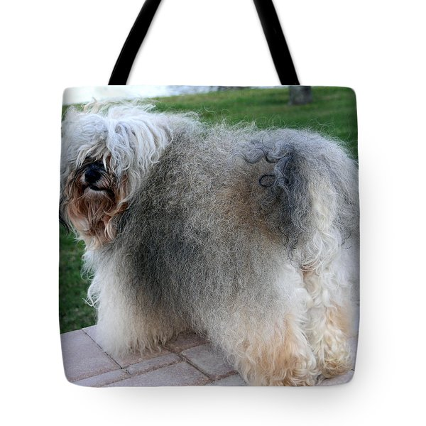 ball of fur Havanese dog Tote Bag by Sally Weigand