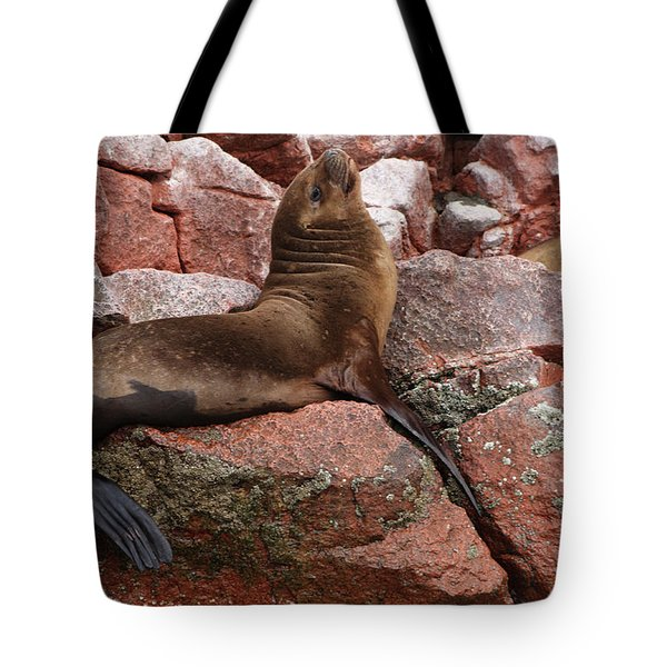 Tote Bag featuring the photograph Ballestas Island Fur Seals by Aidan Moran