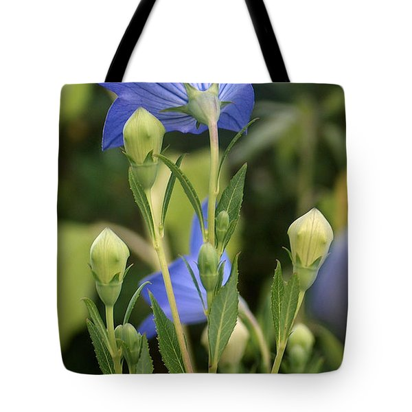 Balloon Flowers Tote Bag by Racquel Morgan