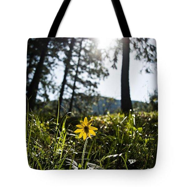 Balsamroot Tote Bag