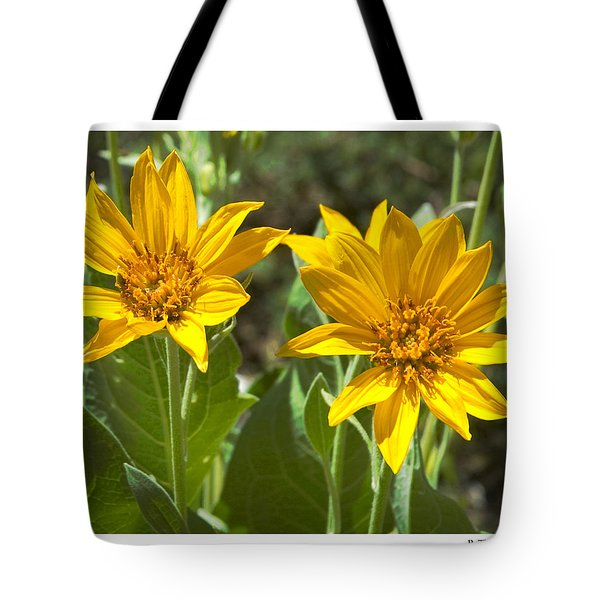 Tote Bag featuring the photograph Balsamroot by R Thomas Berner