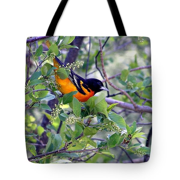 Baltimore Northern Oriole Tote Bag by Susan  Dimitrakopoulos