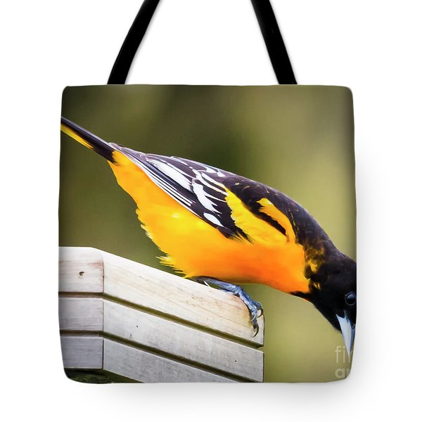 Tote Bag featuring the photograph Baltimore Oriole About To Jump by Ricky L Jones