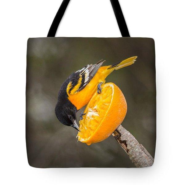 Baltimore Oriole On Orange Tote Bag