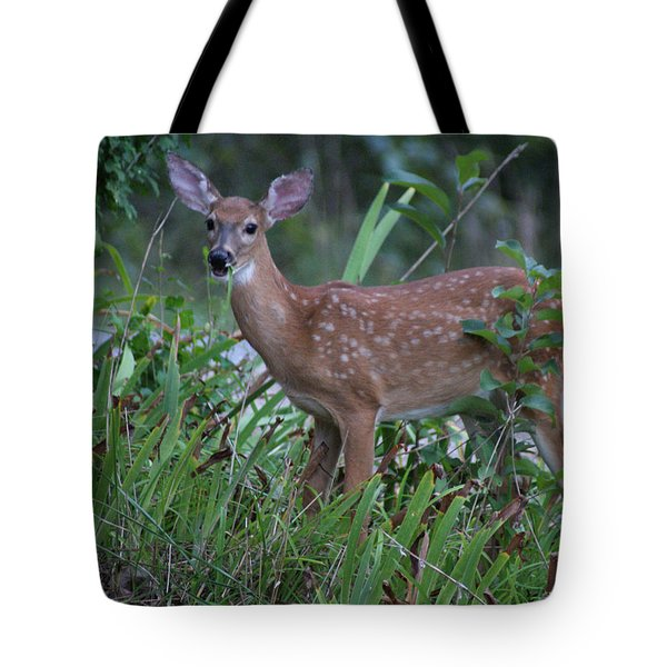 Tote Bag featuring the photograph Bambi by Rick Friedle