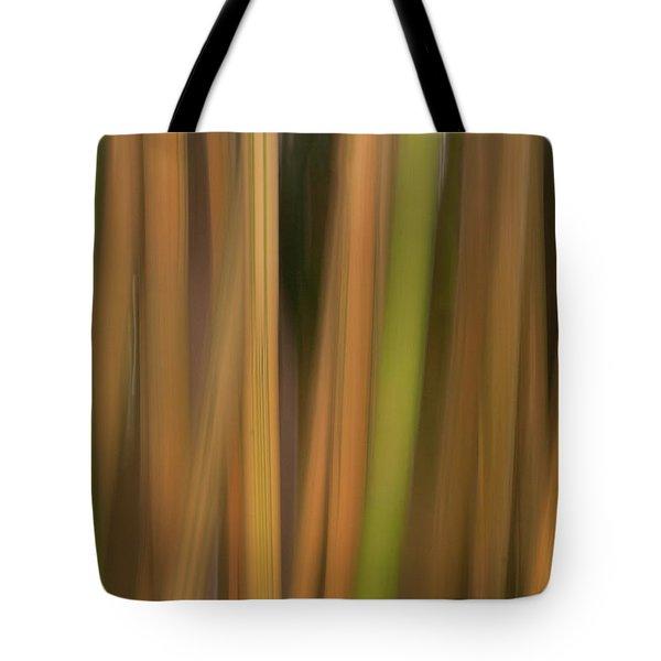 Bamboo Abstract Tote Bag by Carolyn Dalessandro