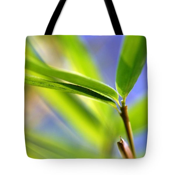 Bamboo Tote Bag by Catherine Lau
