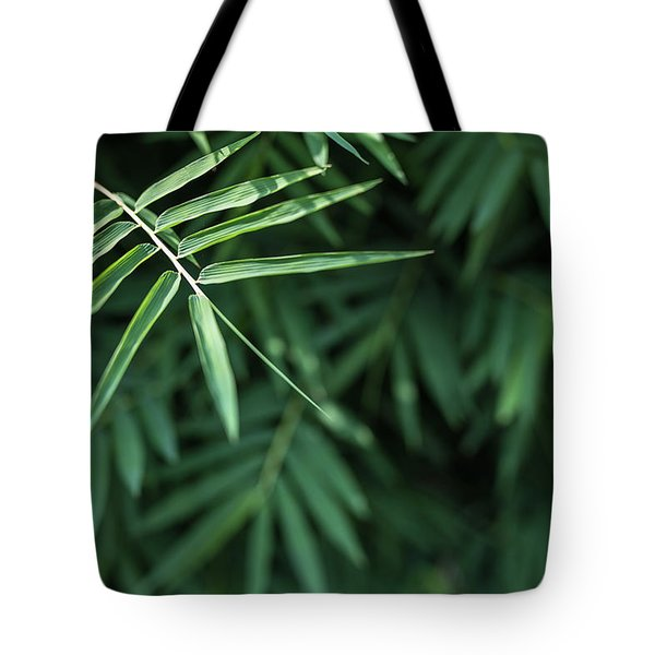 Bamboo Leaves Background Tote Bag