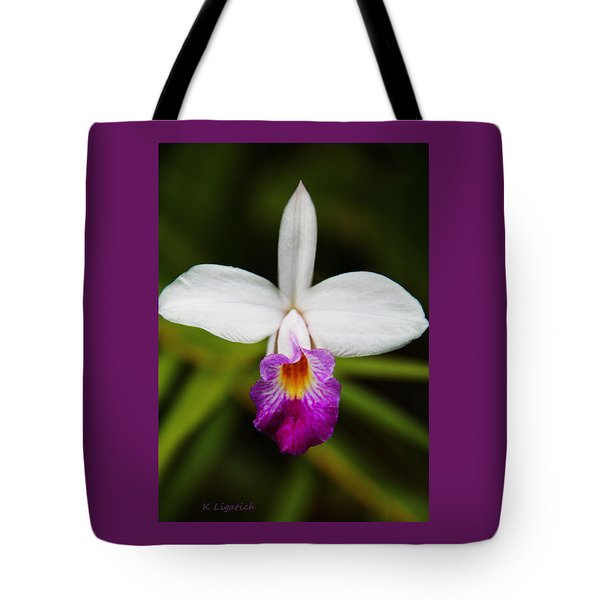 Tote Bag featuring the photograph Bamboo Orchid  by Kerri Ligatich