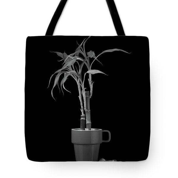 Tote Bag featuring the photograph Bamboo Plant by Tom Mc Nemar