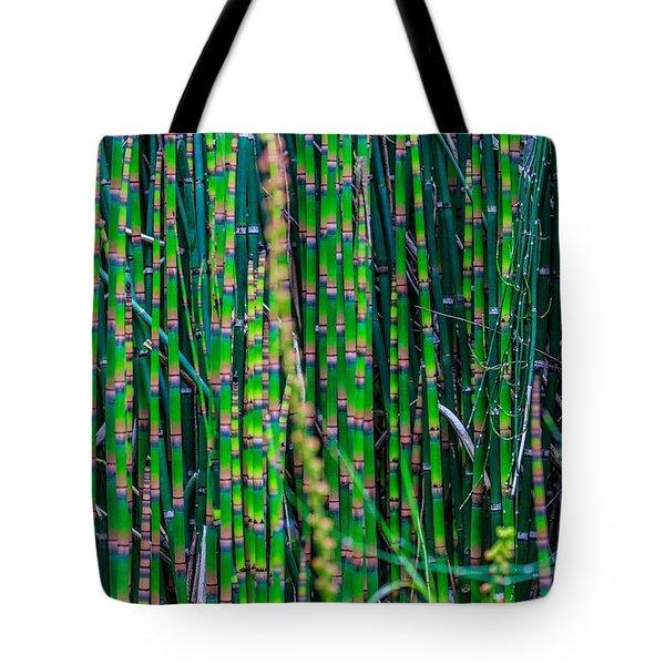 Bamboo Shoots Tote Bag