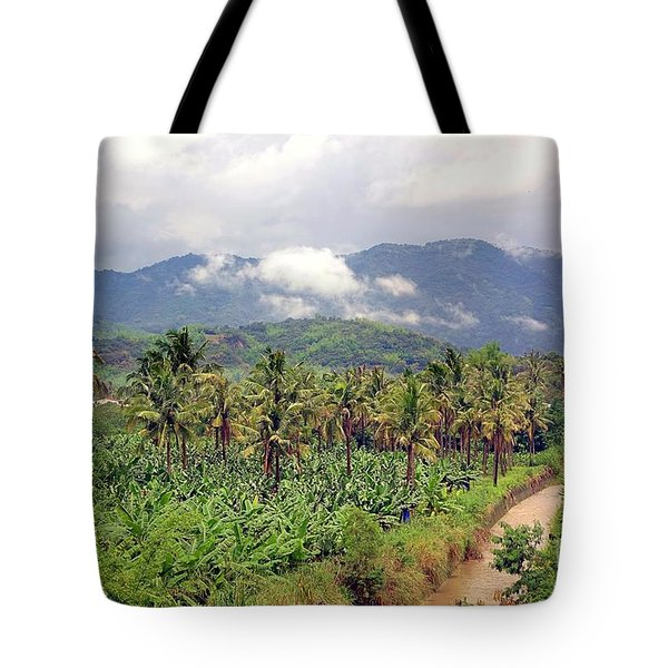 Banana And Palm Trees In Southern Taiwan Tote Bag by Yali Shi