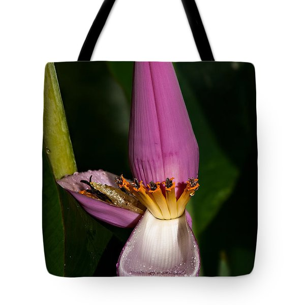 Banana Blossom Tote Bag by Christopher Holmes