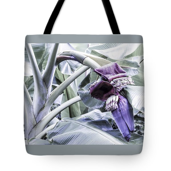 Tote Bag featuring the photograph Banana Beginnings In Cool Shades by Kerri Ligatich