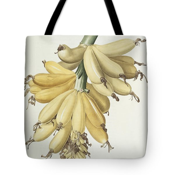 Bananas Tote Bag by Pierre Joseph Redoute