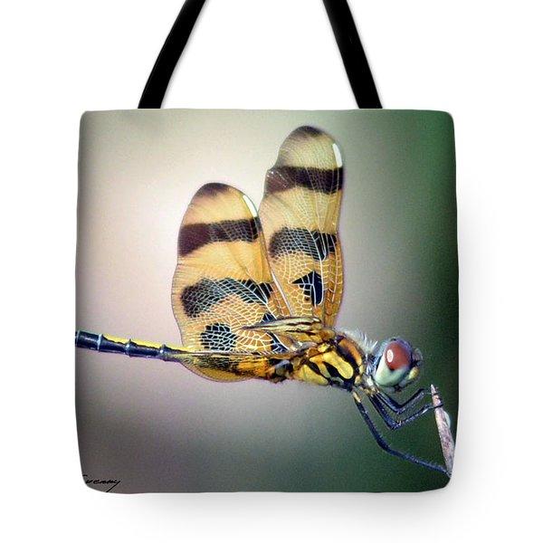 Banded Pennant Tote Bag