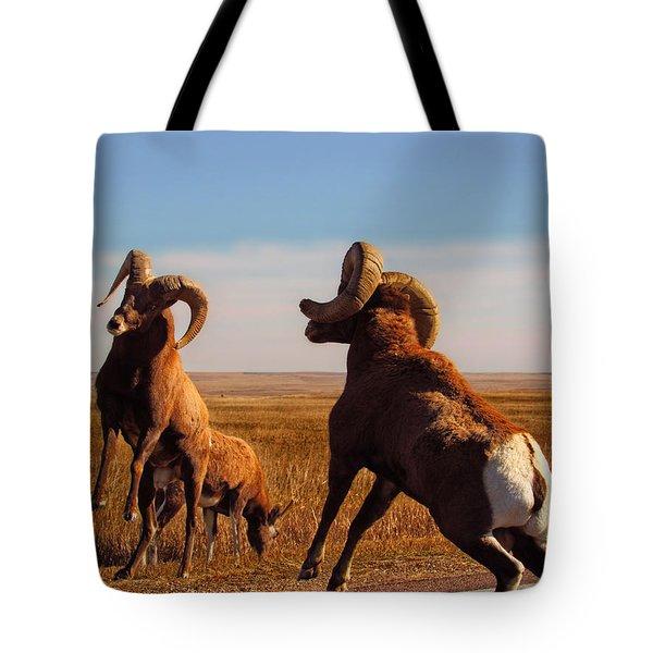 Bang Of The Bighorn Tote Bag