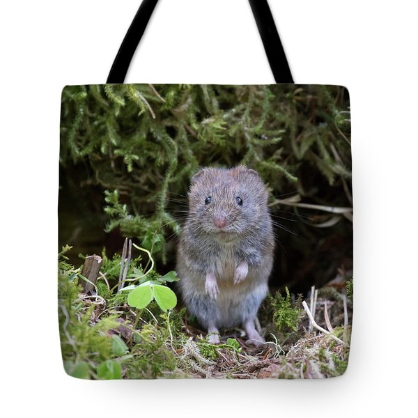 Tote Bag featuring the photograph Bank Vole - Scottish Highlands by Karen Van Der Zijden