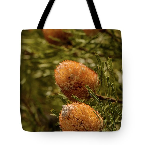 Tote Bag featuring the photograph Banksia by Werner Padarin