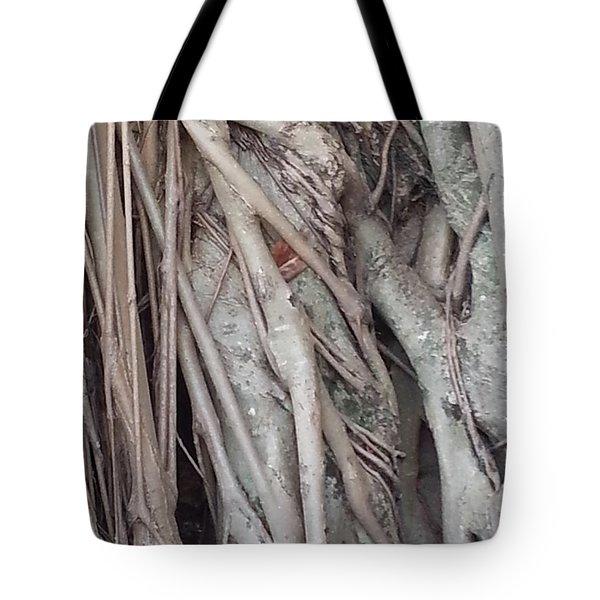 Banyan In Maui Tote Bag