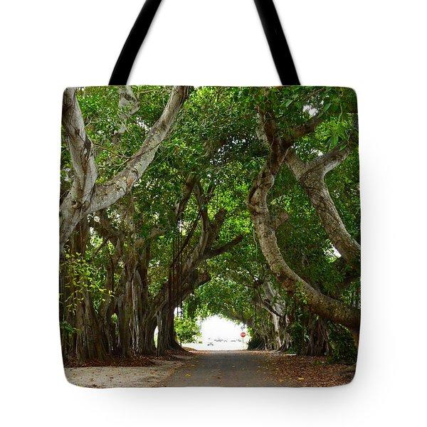 Banyan Street Tote Bag by Carol  Bradley
