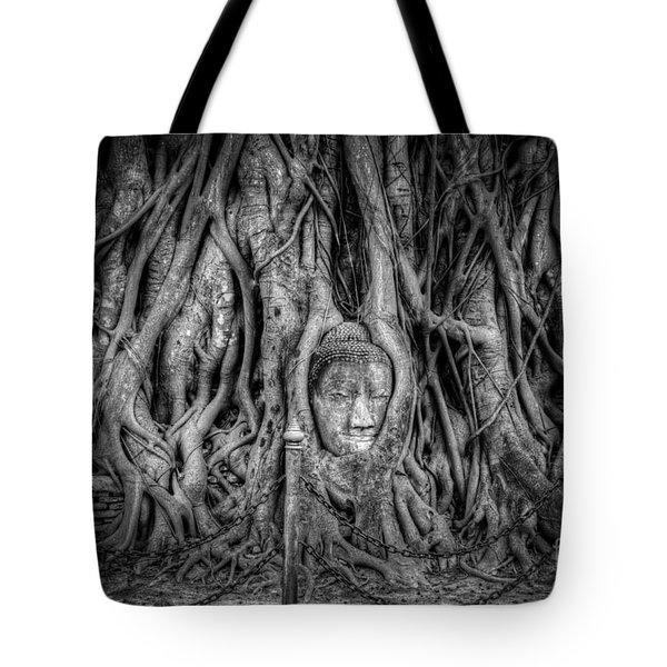 Banyan Tree Tote Bag by Adrian Evans
