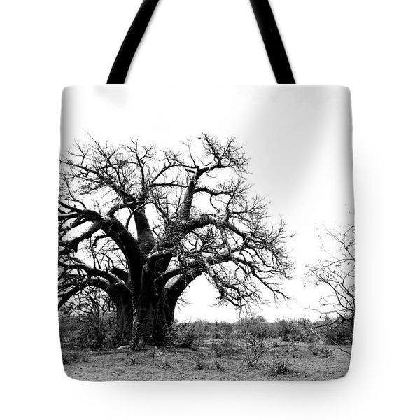 Baobab Landscape Tote Bag by Bruce J Robinson
