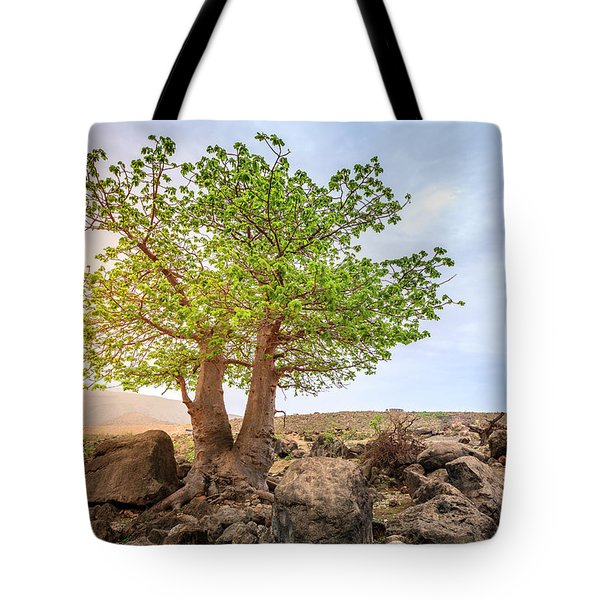 Tote Bag featuring the photograph Baobab Tree by Alexey Stiop