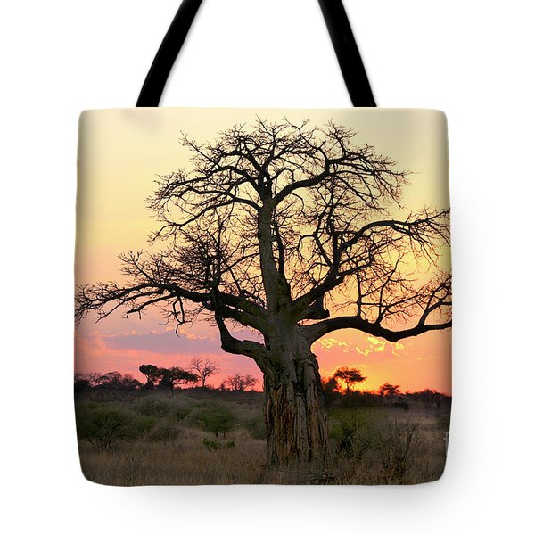 Baobab Tree At Sunset  Tote Bag