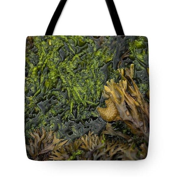 Bar Harbor Maine Coastal Life Tote Bag by Kevin Blackburn