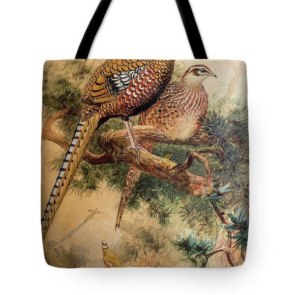 Bar-tailed Pheasant Tote Bag by Joseph Wolf