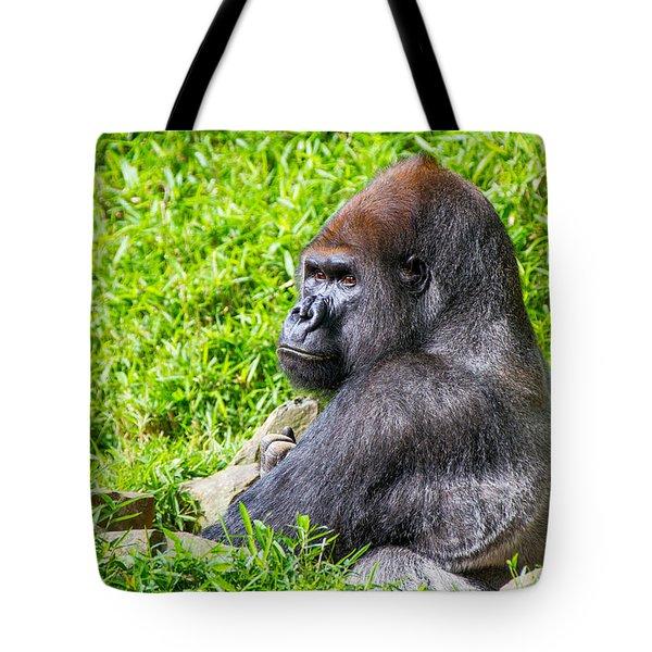 Baraka - Western Lowalnd Silverback Gorilla Tote Bag