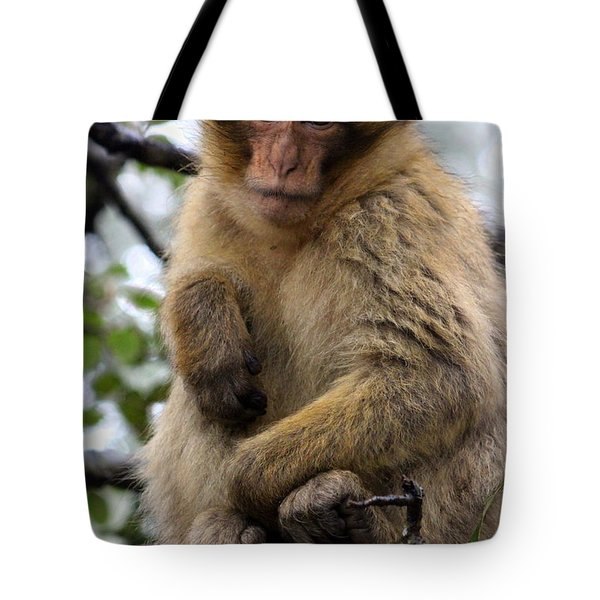 Tote Bag featuring the photograph Barbary Ape by Ramona Johnston