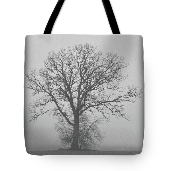 Bare Tree In Fog Tote Bag