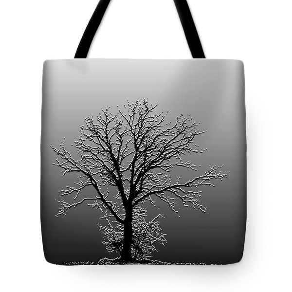 Bare Tree In Fog- Pe Filter Tote Bag by Nancy Landry