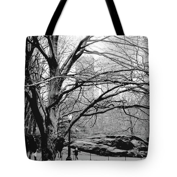 Bare Tree On Walking Path Bw Tote Bag by Sandy Moulder