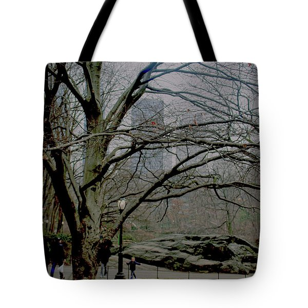Bare Tree On Walking Path Tote Bag by Sandy Moulder