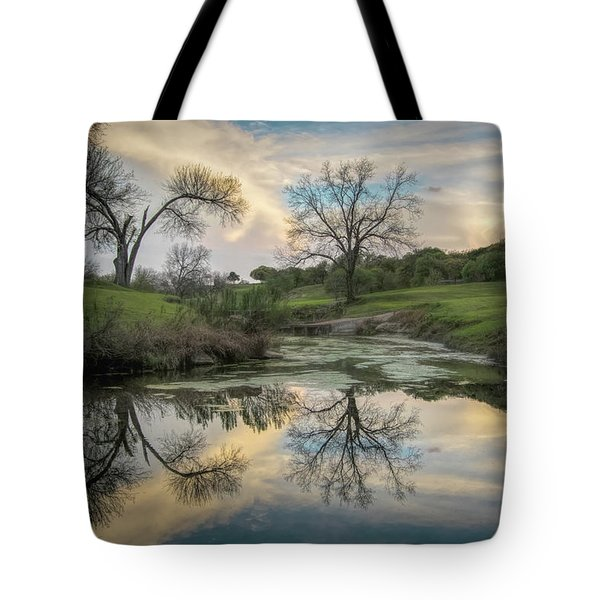 Bare Tree Reflections Tote Bag