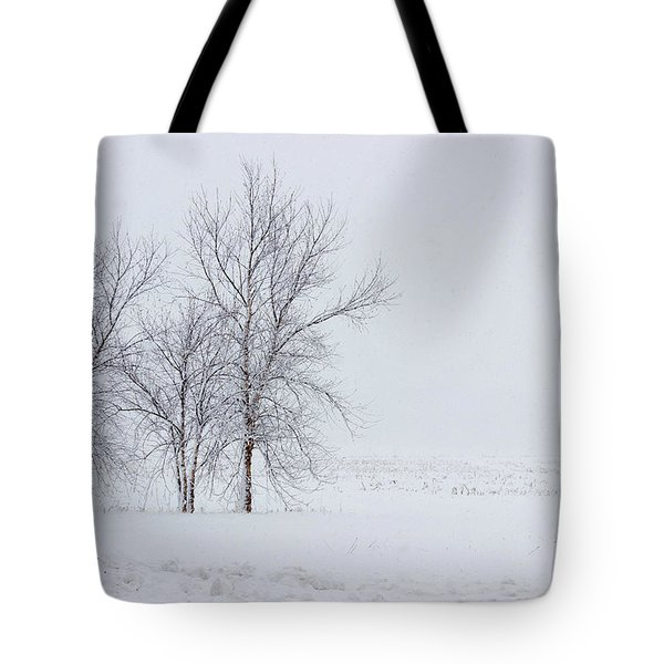 Bare Trees In A Snow Storm Tote Bag