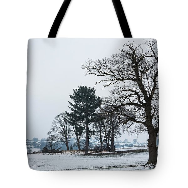 Bare Trees In The Snow Tote Bag