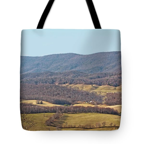 Bare Winter Tote Bag by Denise Romano