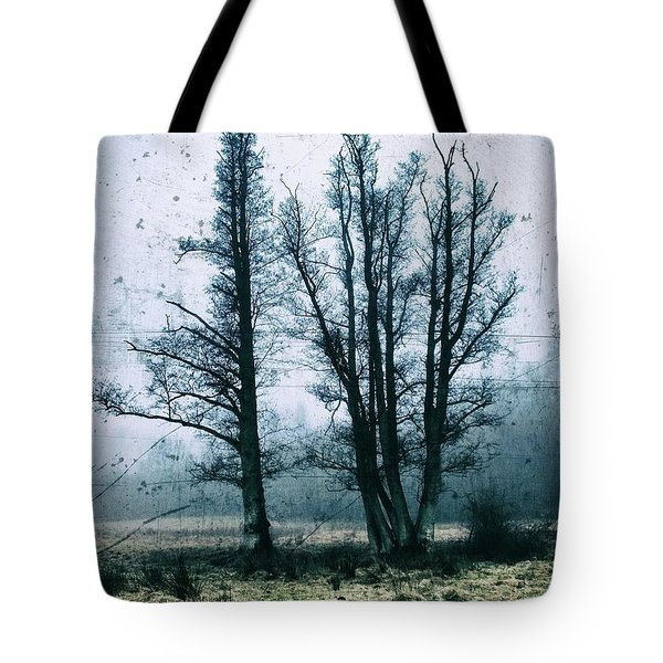Bare Winter Trees Tote Bag by Karen Stahlros
