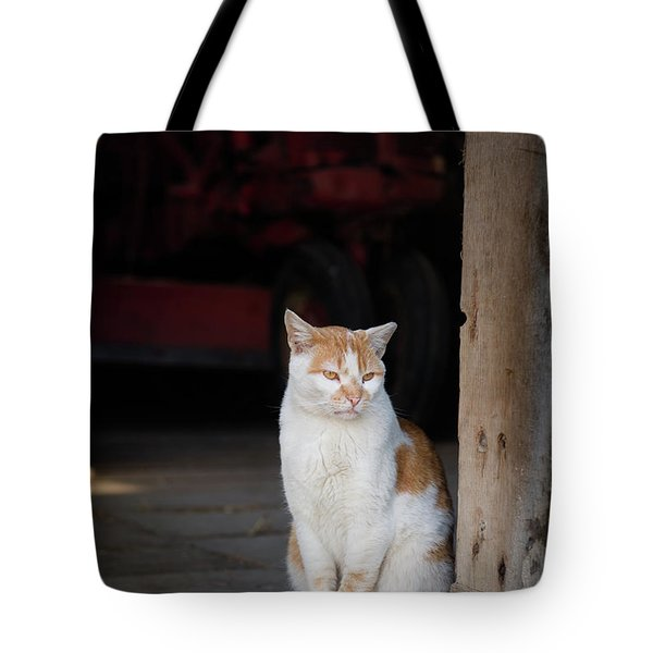 Tote Bag featuring the photograph Barn Cat And Tractor by Dennis Dame