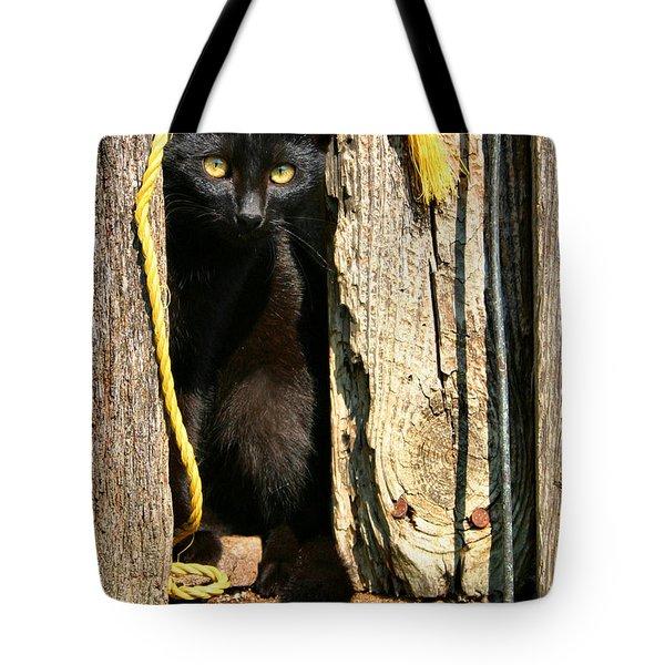 Barn Cat Tote Bag by Kristin Elmquist