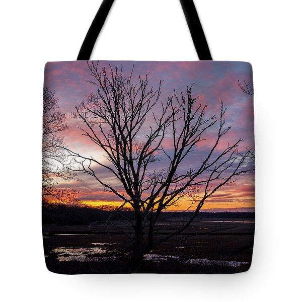 Barn Island - Pawcatuck Ct Tote Bag