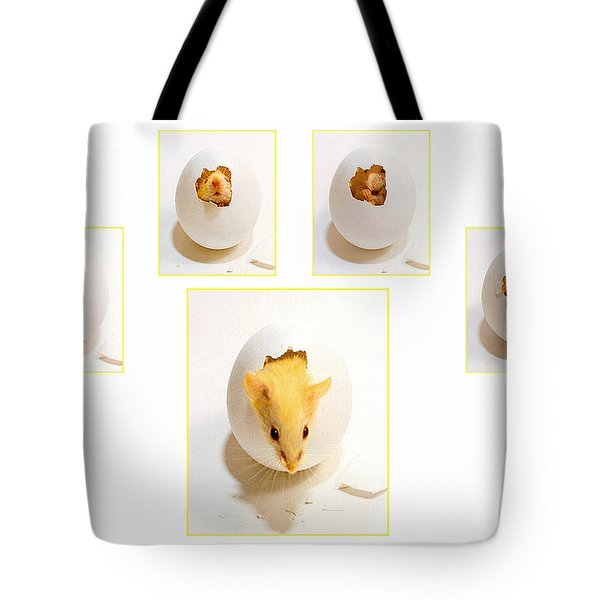 Barn Mouse Tote Bag