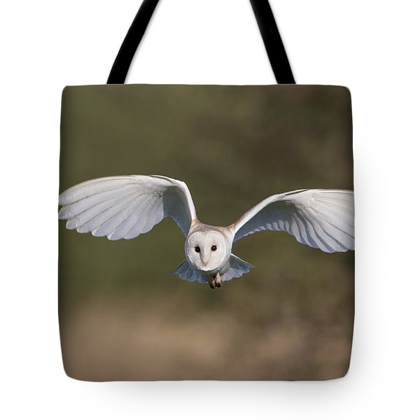 Barn Owl Approaching Tote Bag