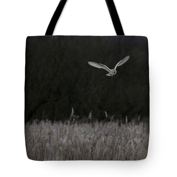 Barn Owl Hunting At Dusk Tote Bag