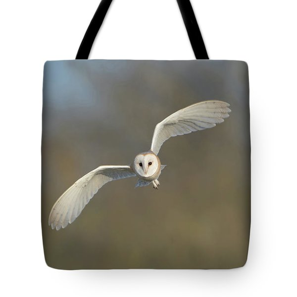 Barn Owl Hunting In Worcestershire Tote Bag